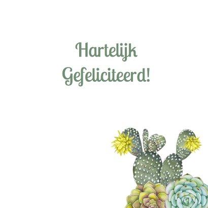 Verjaardag vetplant cactus groen 3