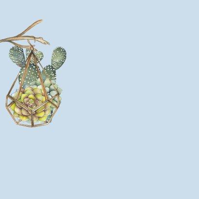verjaardag vetplant cactus 2