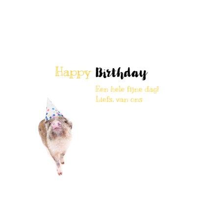 Verjaardagskaart - Feestvarkentje met feesthoedje 3
