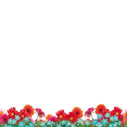 verjaardagskaart hip paard zeegroen roze 2