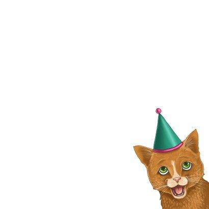 Verjaardagskaart katje met feesthoedje 3