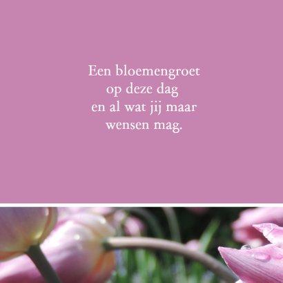 Verjaardagskaart roze tulp - SK 2