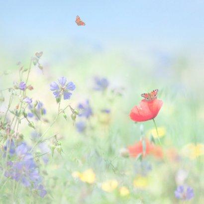 Vertel het met zomerbloemen 2