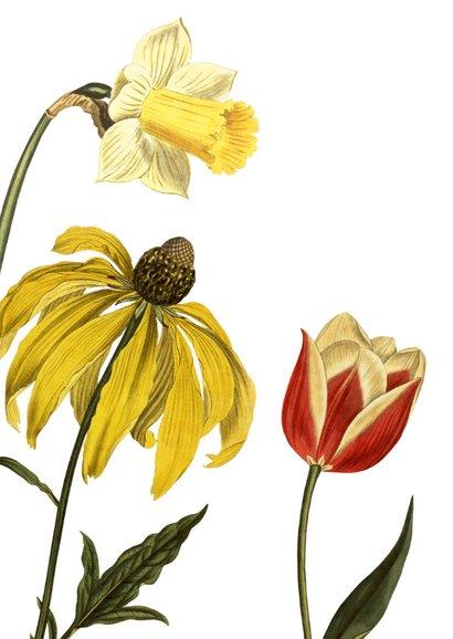 Vrienden zijn als bloemen 2