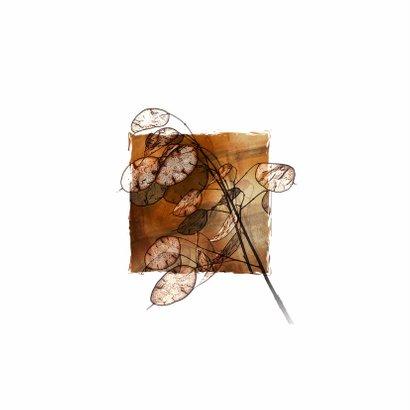 YVON DROOM kruid rouwkaart 2