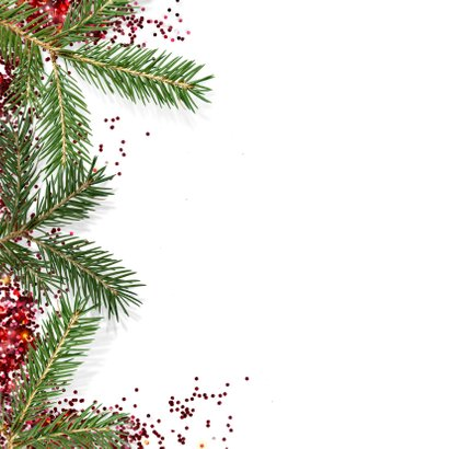 Zakelijke kerstkaart takken glitter 2