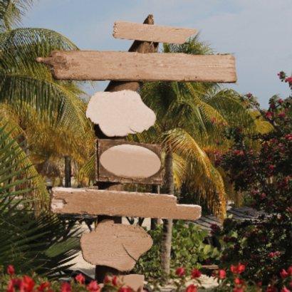 Zomer palmbomen paal hout 4knt 2
