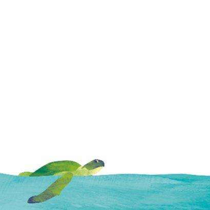 Zwemdiploma schildpad in de zee 2