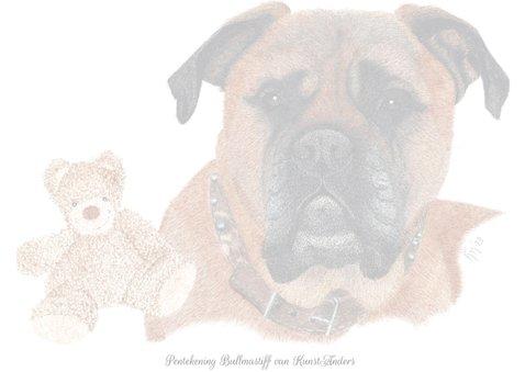 Bullmastiff 2