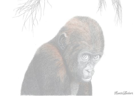 Dierenkaarten Adjibolo de aap 2