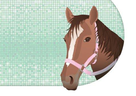 Felicitatie paard divers roze bling 2