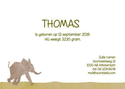 Geboortekaartje olifant jongen 3