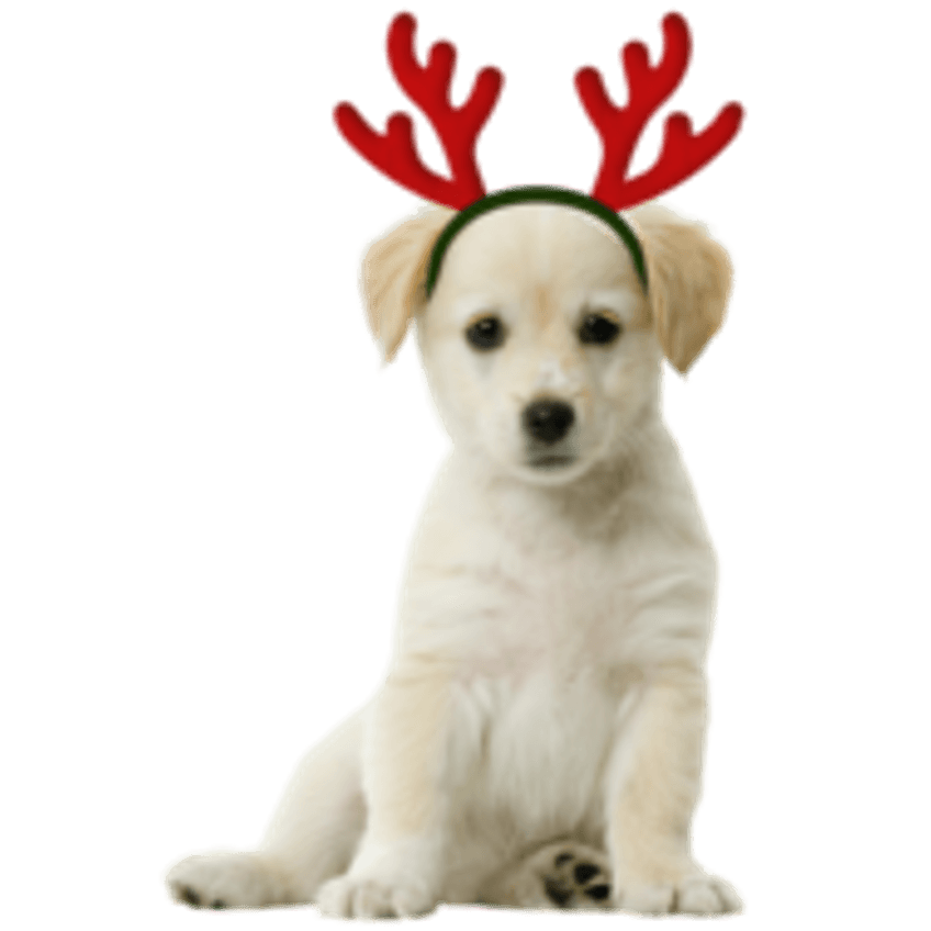 Figuur voor kerstkaart - page hondje met gewei